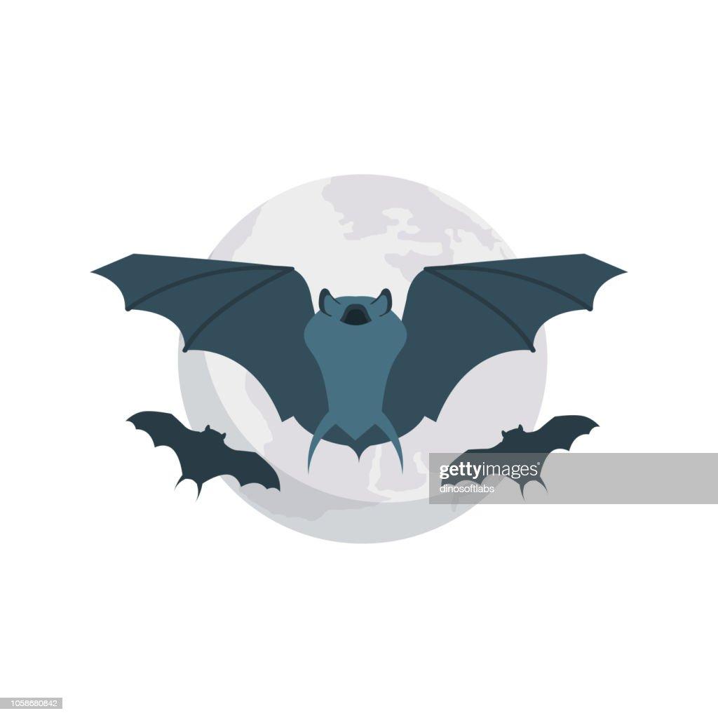 bat  fly  animal