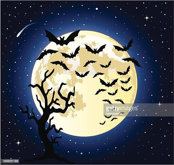 bats flying across the full moon