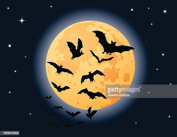 Bats Harvest Moon