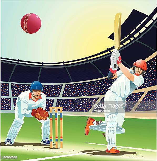 batsman striking cricket ball for four runs - wicket stock illustrations