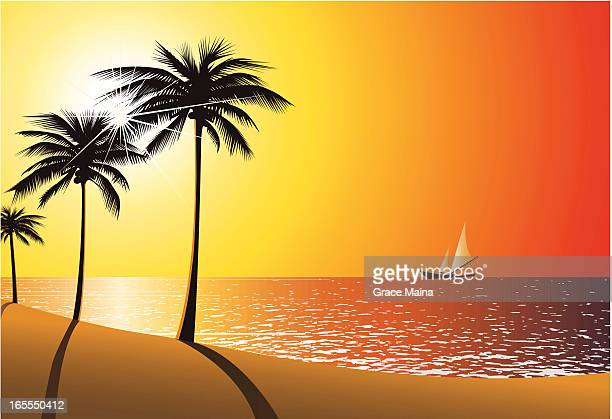 Beach Sunset - VECTOR