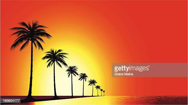 beach sunset - vector - clip art stock illustrations