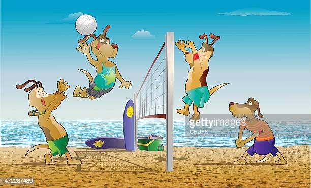 ilustraciones, imágenes clip art, dibujos animados e iconos de stock de voleibol de playa - vóleibol de playa