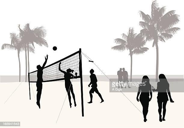 ilustraciones, imágenes clip art, dibujos animados e iconos de stock de beachvolleys - vóleibol de playa