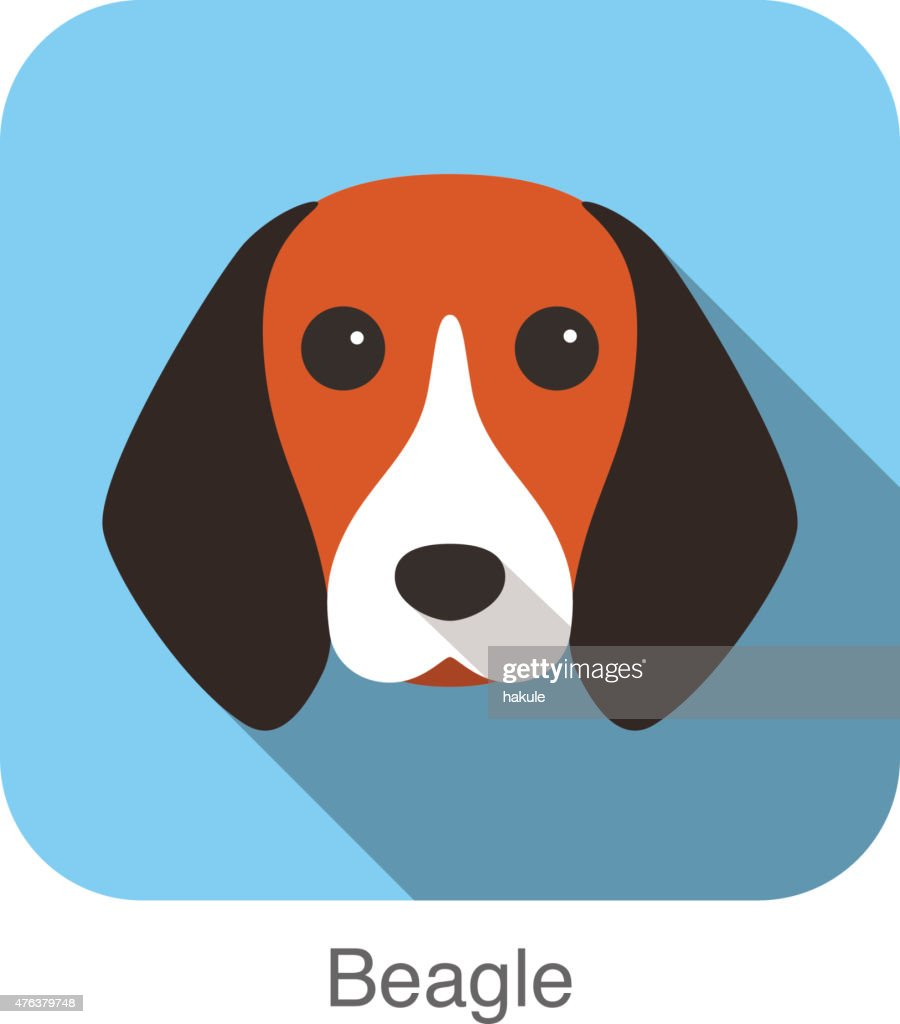 Beagle, dog face portrait flat icon design