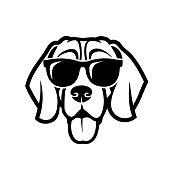 Beagle dog wearing sunglasses - isolated outlined vector illustration