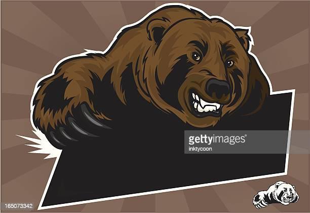 ilustraciones, imágenes clip art, dibujos animados e iconos de stock de garra de oso - oso pardo