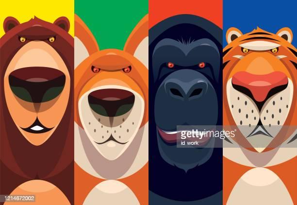 bear fox chimpanzee tiger - animal body part stock illustrations