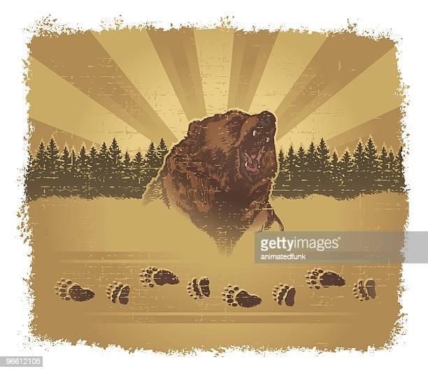 ilustraciones, imágenes clip art, dibujos animados e iconos de stock de oso de grunge - oso pardo