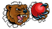 Bear Holding Cricket Ball Breaking Background