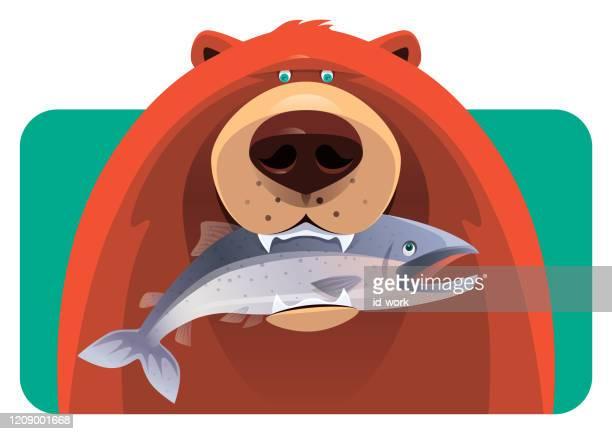 illustrations, cliparts, dessins animés et icônes de poissons de fixation d'ours - saumon