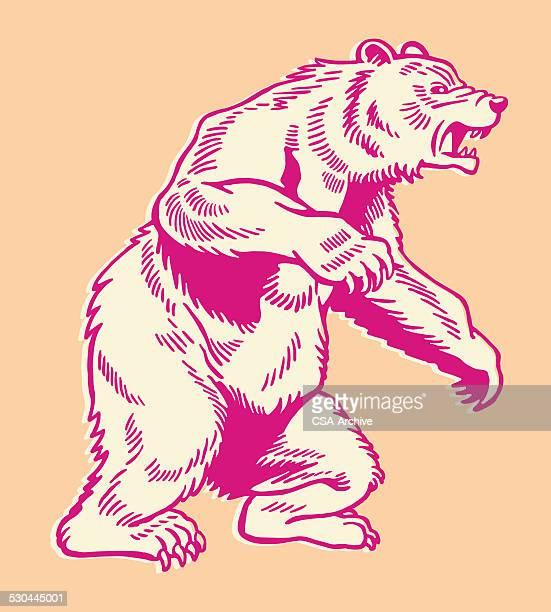 illustrations, cliparts, dessins animés et icônes de bear sur le dos carrés - ours