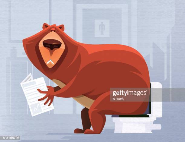 bear reading in toilet