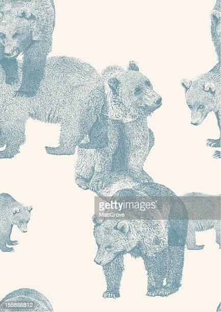 ilustraciones, imágenes clip art, dibujos animados e iconos de stock de bear de repetir - oso pardo