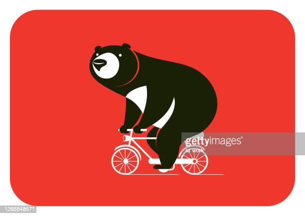 illustrations, cliparts, dessins animés et icônes de ours à vélo - velo humour
