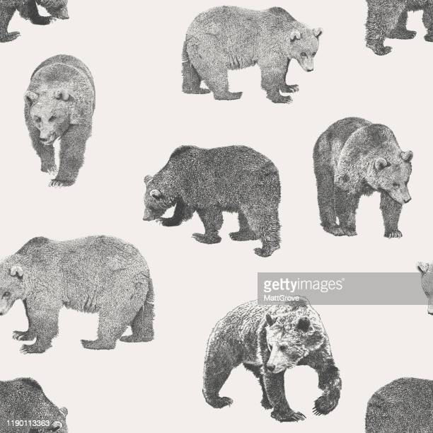 bear seamless repeat pattern - grizzly bear stock illustrations