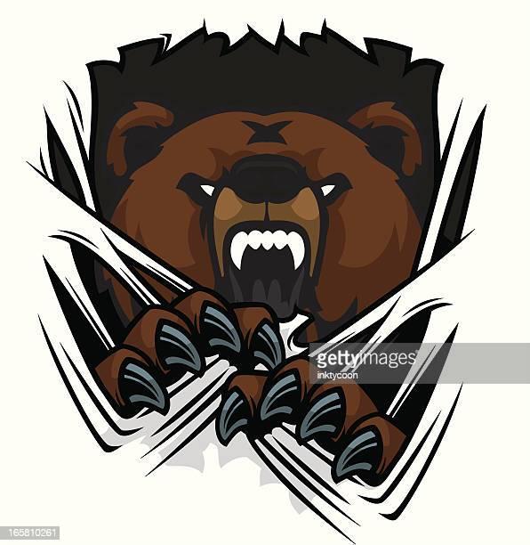 ilustraciones, imágenes clip art, dibujos animados e iconos de stock de oso de lagrimeo - oso pardo