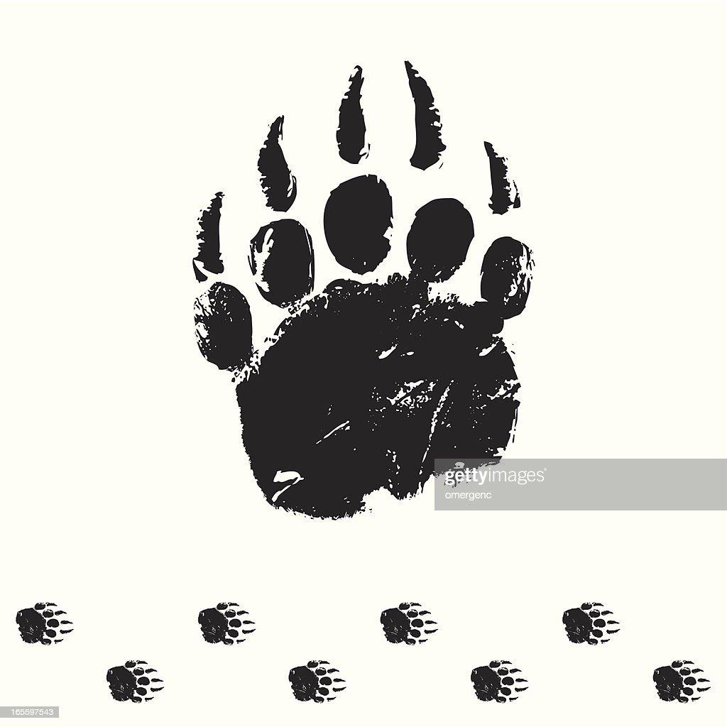 bear piste : Illustration