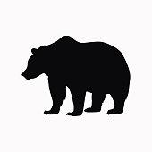Bear vector  icon.