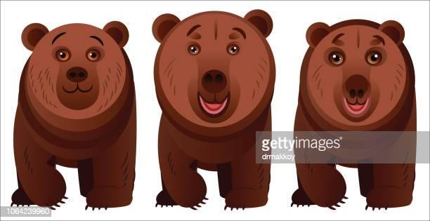 ilustraciones, imágenes clip art, dibujos animados e iconos de stock de oso de - oso pardo
