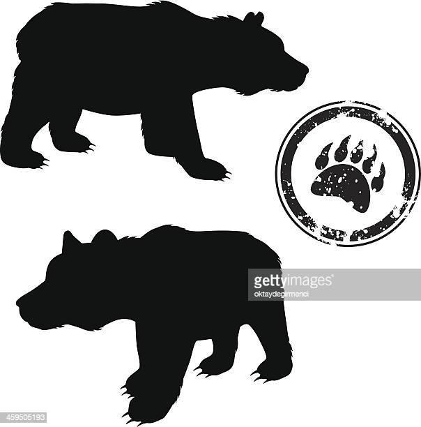 bear - bear tracks stock illustrations