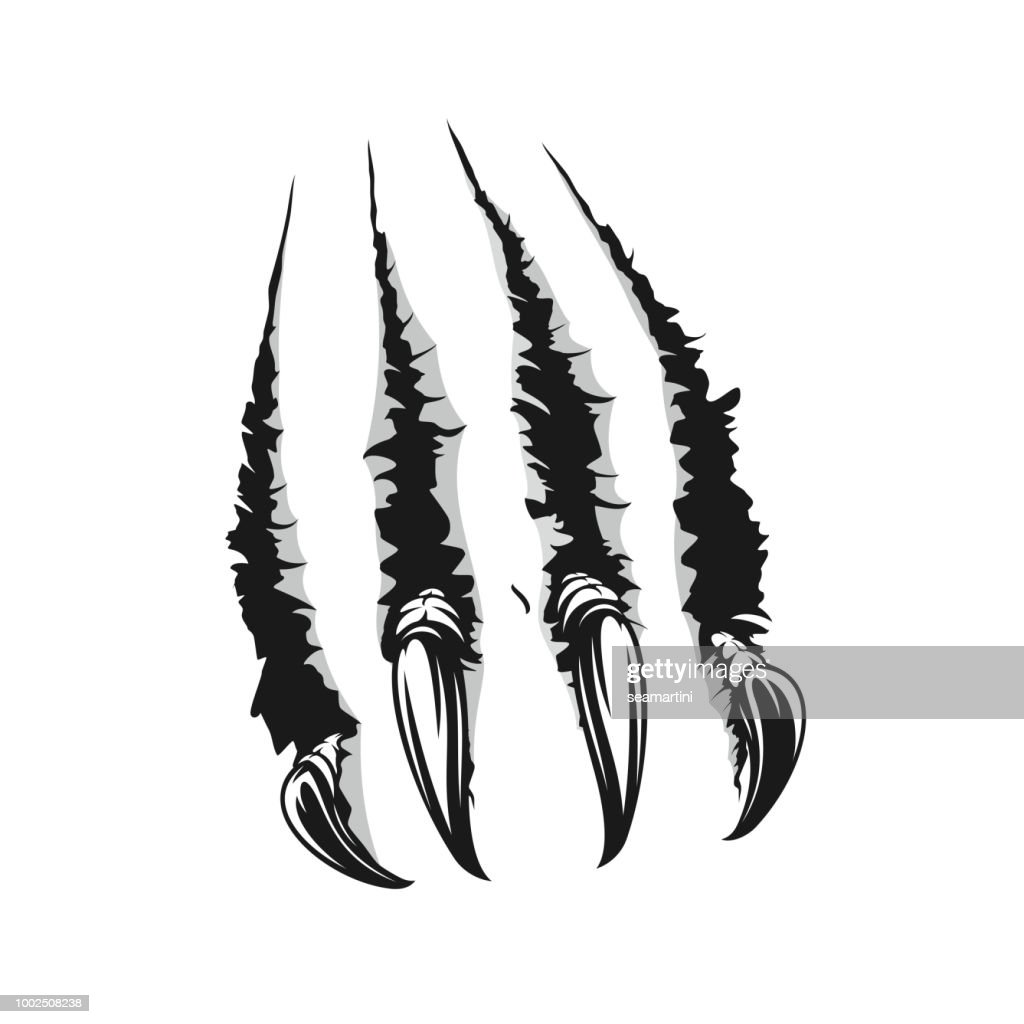 Beast scratch claw tear off paper vector