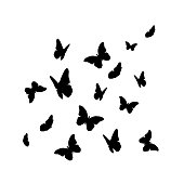 Beautifil Butterfly Silhouette Isolated on White Background Vect