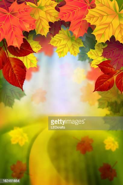 美しい秋の背景
