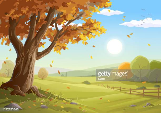 beautiful autumn landscape - falling stock illustrations