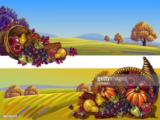 Beautiful Autumn/Thanksgiving Backgrounds