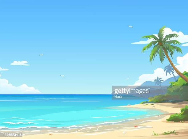 stockillustraties, clipart, cartoons en iconen met prachtig strand - strand