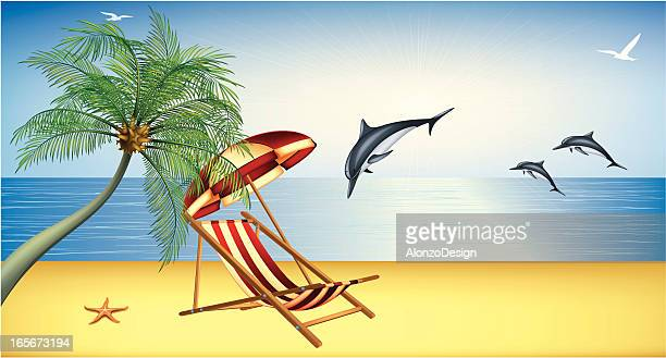 Beautiful Beach with Dolphins