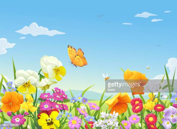 illustrations, cliparts, dessins animés et icônes de belle prairie fleurie - abeille