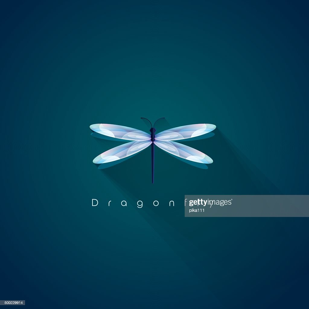 Beautiful brightly illuminated dragonfly vector design element