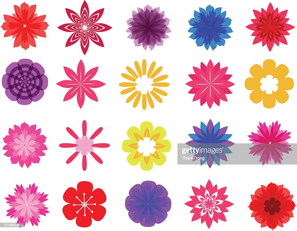 beautiful colorful flowers vector collection in silhouette isolated for design