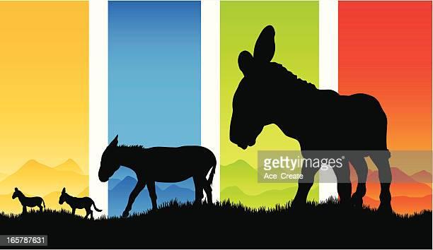 ilustraciones, imágenes clip art, dibujos animados e iconos de stock de hermoso burro siluetas en el país - mula