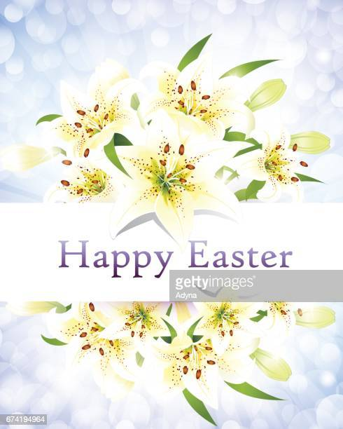 beautiful easter lily - easter lily stock illustrations