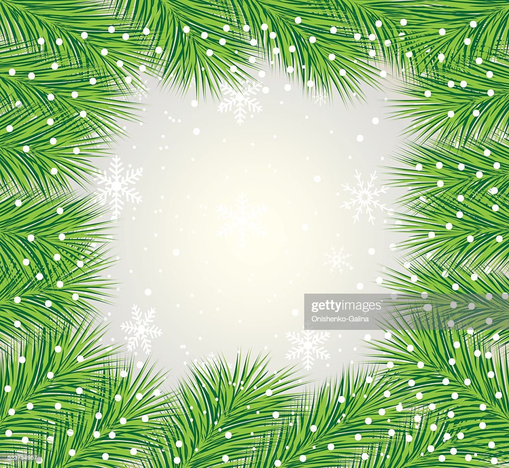 beautiful festive background with the branches of fluffy fir-tr