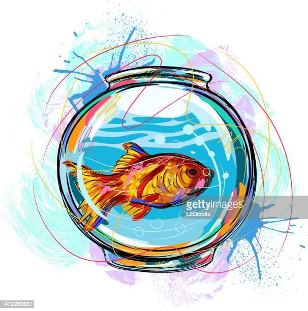 illustrations, cliparts, dessins animés et icônes de magnifique fish bowl - poisson rouge