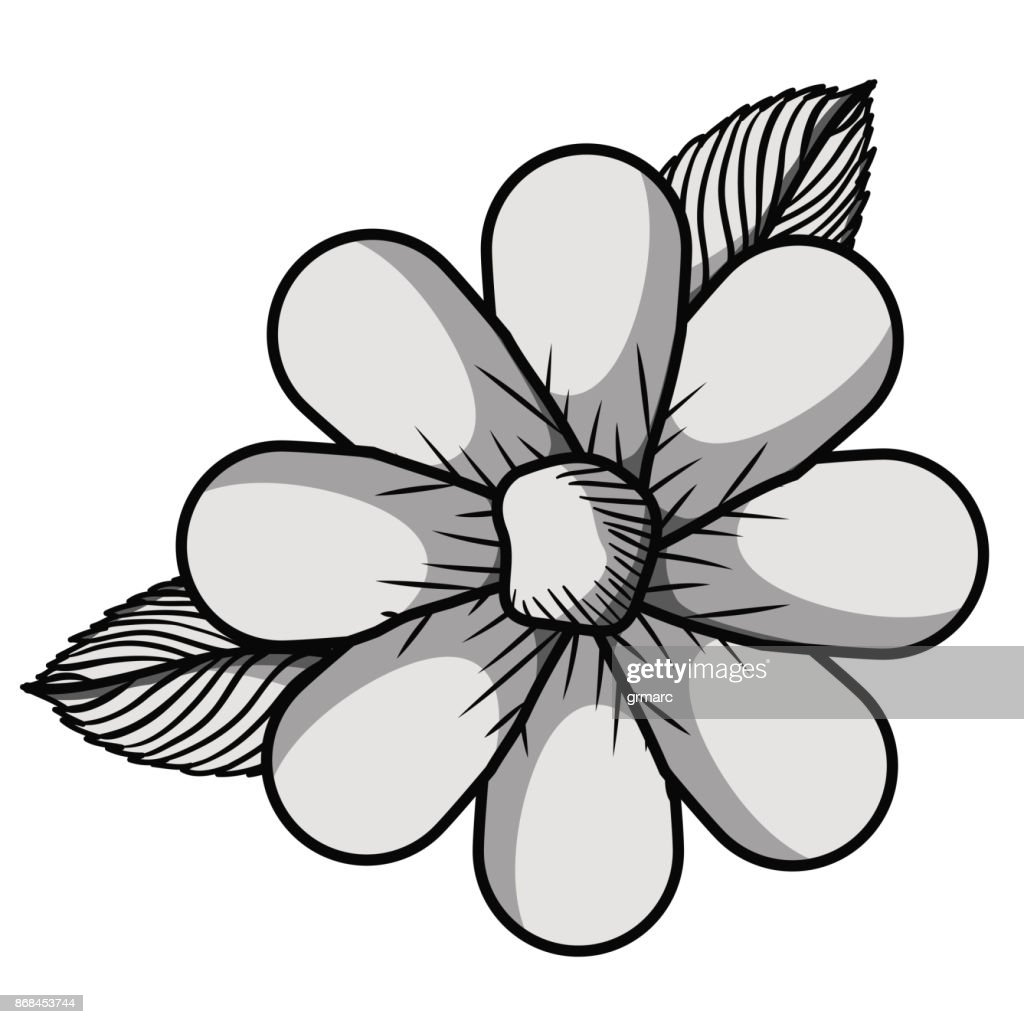 Beautiful Flower Drawing Isolated Vector Art Getty Images