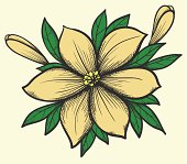 beautiful flower with leaves in a hand-painted graphic style