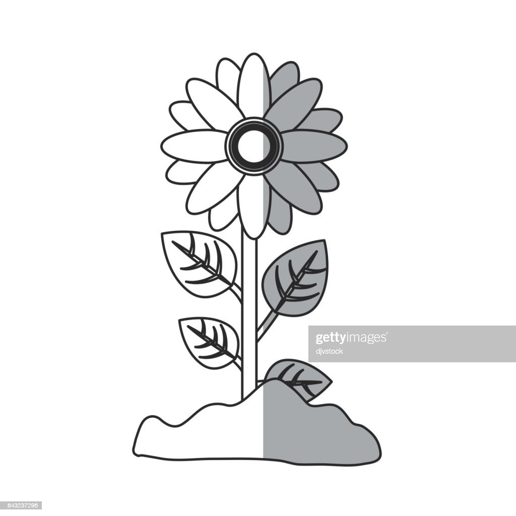 Beautiful Flowers Design Vector Art Getty Images
