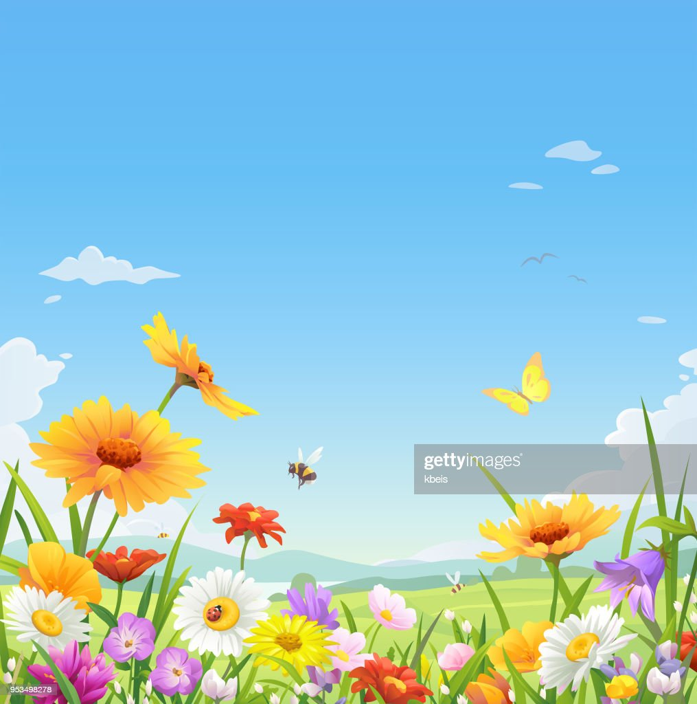 Beautiful Flowers Under A Blue Sky : stock illustration