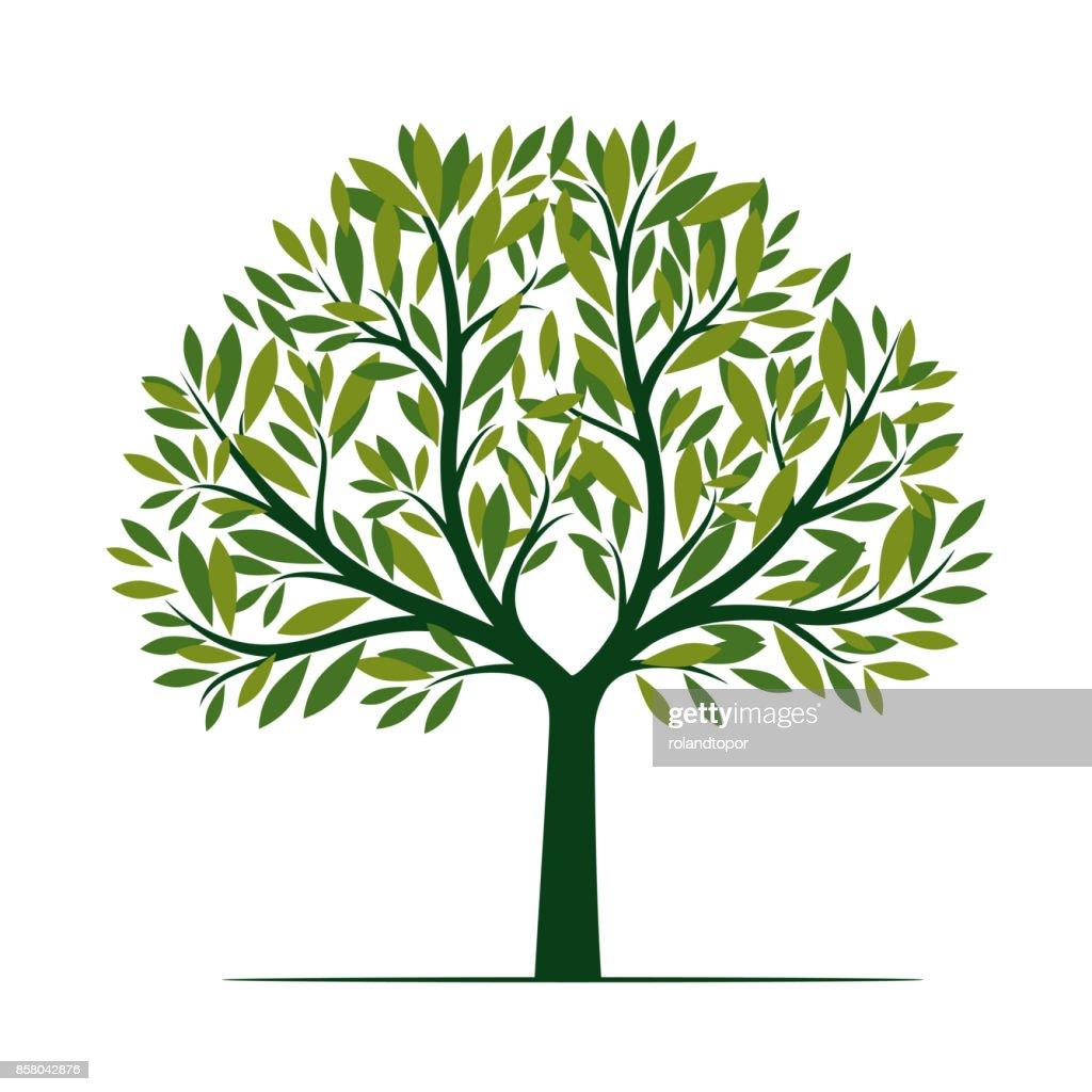 Beautiful Green Tree. Vector Illustration.