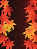 Beautiful Japanese autumnal leaves (brown back)