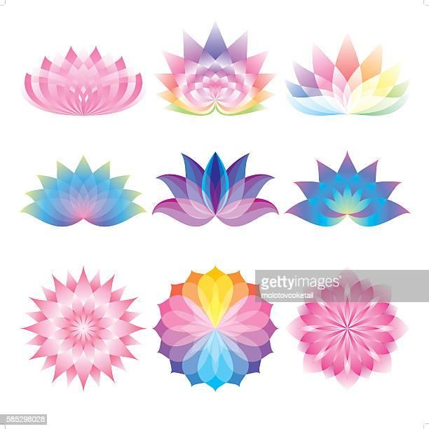 beautiful lotus set - lily stock illustrations, clip art, cartoons, & icons