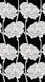 Beautiful monochrome, black and white seamless background with carnation.