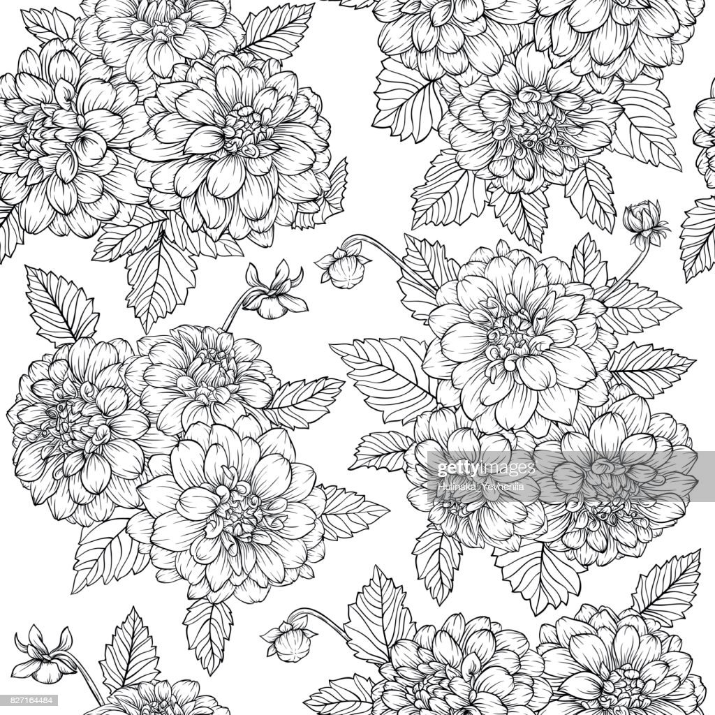 Beautiful monochrome, black and white seamless pattern with dahlia bouquets. Hand-drawn contour.