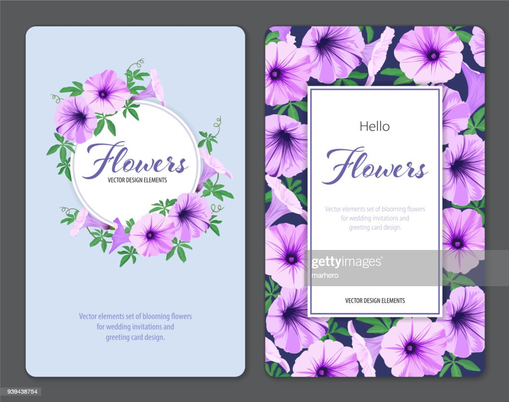 Beautiful morning glory flowers and leaf on blue background template.