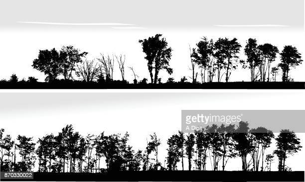 beautiful nature treeline - deciduous tree stock illustrations, clip art, cartoons, & icons